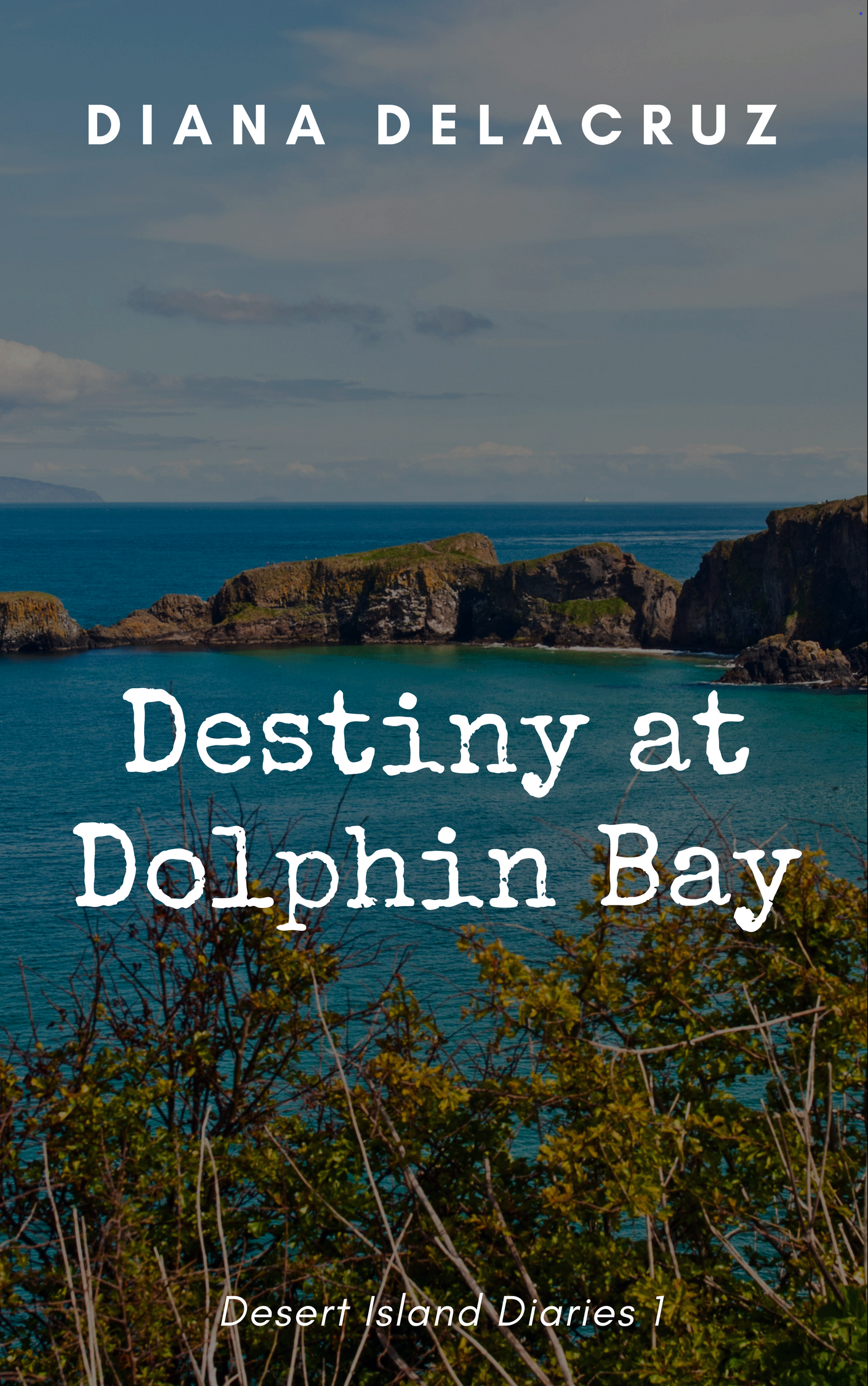 Dolphin Bay book cover