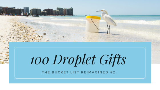 Bucket list gifts for Jesus, seagull operation