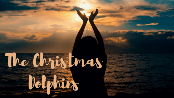The Christmas Dolphins